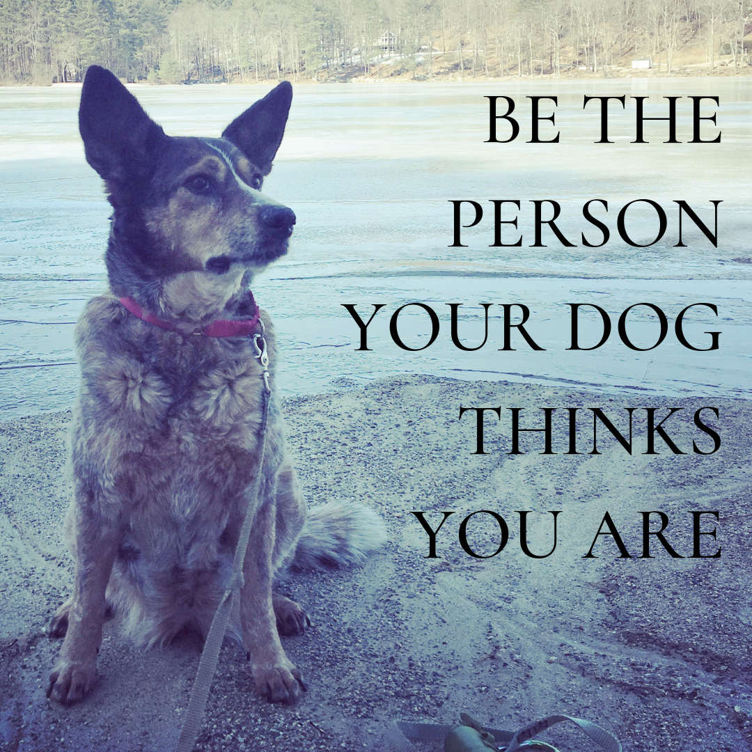 "An image of Maybelle with the words ""be the eprson your dog thinks you are."""